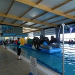 Grand Opening – Nepean Aquatic Centre